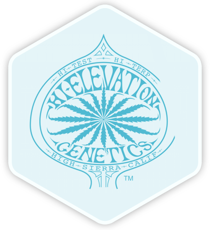 Hi Elevation Genetics High Sierra Calif