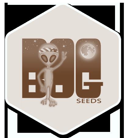 BOG Seeds logo2