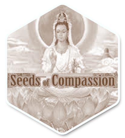 Seeds of Compassion logo1