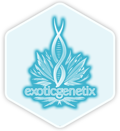 Exotic Genetix logo 1