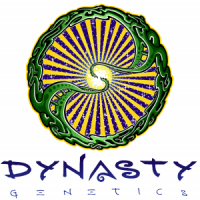 Dynasty Genetics cannabis seeds brand logo design