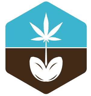 seeds for me brand cannabis leaf logo square