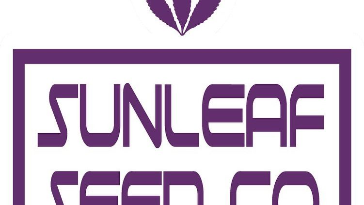 sunleaf seed co cannabis seed brand logo