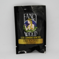 Big O Bx cannabis seeds fancy weed