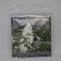 eastcoasterlamb seed pack mass medical strains