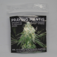 praying mantis marijuana seeds mms
