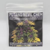 putang nevil chem gift seeds mass medical strains