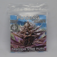 marijuana seed packaging putang mass medical strains