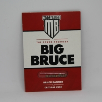 big bruce mega bud marijuana seeds