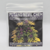 putang neville chem gidt seeds mass medica strains