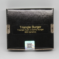 Triangle Burgers marijuana seeds from 808 Genetics