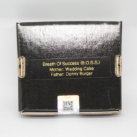 Breath of success B.O.S.S. cannabis seeds by 808 Genetics