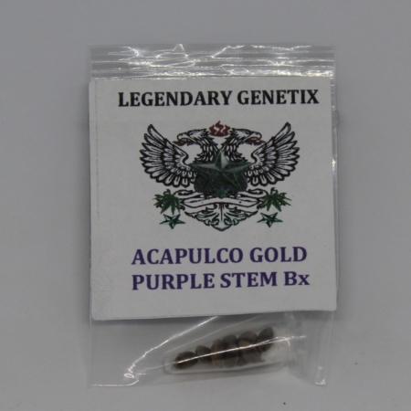 acapulco gold bx purple stem cannabis seeds