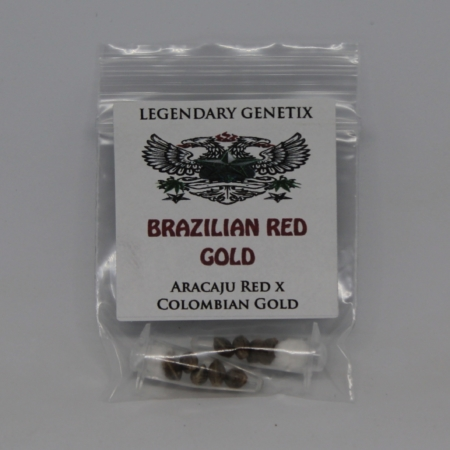 Brazil Red gold marijuana seeds legendary snow high seeds