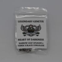 heart of darkness rare cannabis seeds show high brand