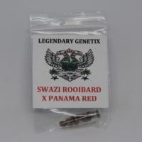 swazi rooibard x panama red cannabis seeds legendary genetix