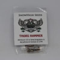 Thors Hammer marijuana seeds