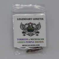 Torreon x Michocan mexican sativa landrace heirloom mota seeds