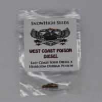 West coast poison diesel cannabis seeds ecsd x durban poison mmj seeds