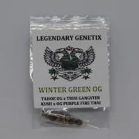 Wintergreen OG oldschool marijuana seeds