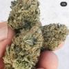 The UNdertaker marijuana seeds Terp Fiend