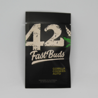 gorilla cookies fast buds autoflowering cannabis seeds