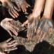 hash hands indian landrace exchange full power selections
