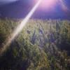 manipur burma border indian cannabis field