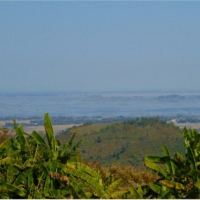 manipur burma border india cannabis