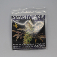 anaphylaxis cannabis seeds